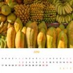 fotokalender 2013 - juni